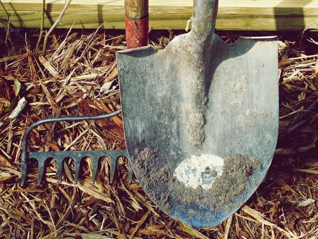 Shovel to dig up the root