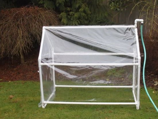 Foldable and Affordable Mini Greenhouse